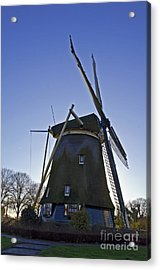 Windmills Of Holland Acrylic Print by Pravine Chester
