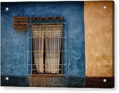 Window And The Birdcage Acrylic Print