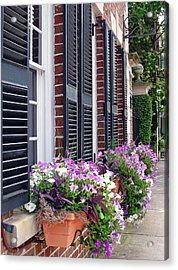 Window Box 2 Acrylic Print by Sarah-jane Laubscher