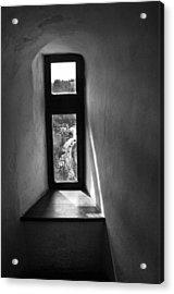 Window Dracula's Castle Interior204 Acrylic Print by Dorin Stef