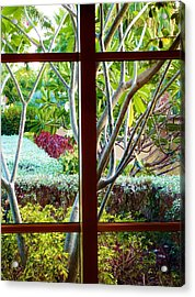 Acrylic Print featuring the photograph Window Garden by Amar Sheow