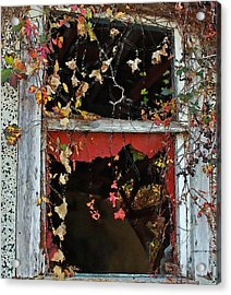 Acrylic Print featuring the photograph Window Of A Time Gone By by Ellen Tully