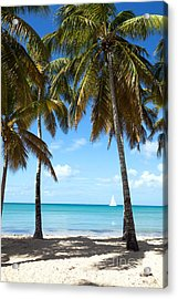 Window On The Caribbean Acrylic Print by Matteo Colombo