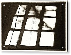 Window Shadow Acrylic Print by Craig Brown