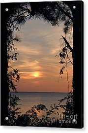 Window To Another World Acrylic Print by Ela Sita