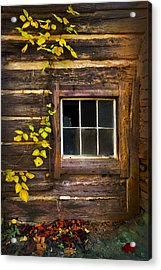 Window To The Soul Acrylic Print by Debra and Dave Vanderlaan