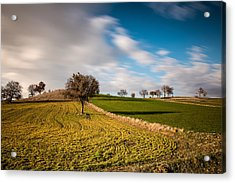 Windows 9 Default Background Image Acrylic Print