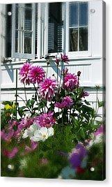 Windows And Flowers Acrylic Print by Randy Pollard