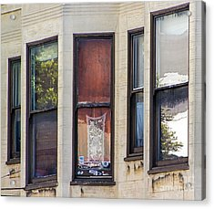 Acrylic Print featuring the photograph Windows by Kate Brown