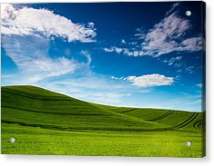 Windows Xp Acrylic Print