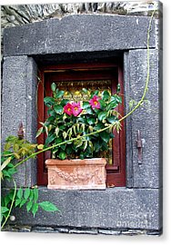 Acrylic Print featuring the photograph Windowsill by Gerry Bates