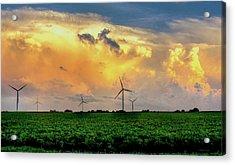 Winds Of Change Acrylic Print