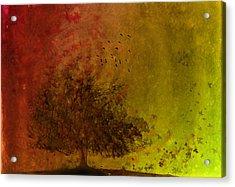 Winds Of Change Acrylic Print by Hazel Billingsley