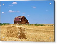 Windswept And Lonely Colorado Barn Acrylic Print