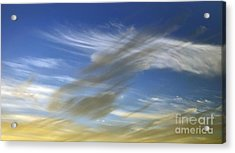 Windswept Acrylic Print by Kaye Menner