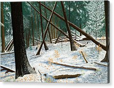 Windswept Woods Acrylic Print