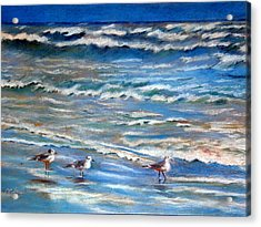 Windy Day At The Gulf    Pastel    Acrylic Print by Antonia Citrino