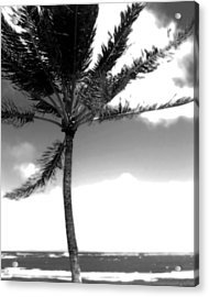 Windy Day Acrylic Print