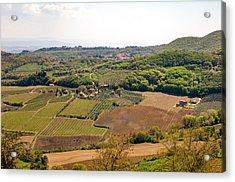 Wine Fields In Tuscany Acrylic Print by Jakob Montrasio