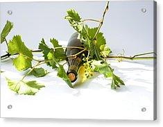 Wine Acrylic Print by Patricia Hofmeester
