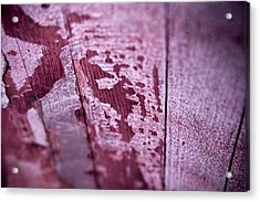 Wine Red Acrylic Print by Frank Tschakert