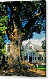 Winelands Manor Oak Acrylic Print