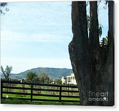Acrylic Print featuring the photograph Winery by Bobbee Rickard