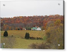 Winery In Virginia At Fall Acrylic Print by Renee Braun