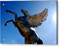 Winged Wonder I Acrylic Print