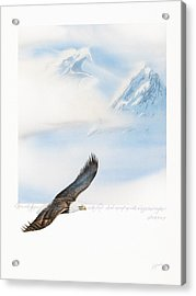 Wings As Eagles Acrylic Print by Cliff Hawley