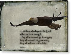 Wings Like Eagles Acrylic Print