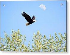 Wings Of The Moon Acrylic Print by Lori Tordsen