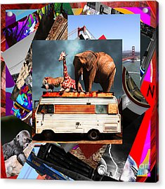 Wingsdomain Art And Photography Collage 20130108 V4 Acrylic Print
