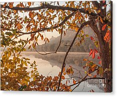 Acrylic Print featuring the photograph Winona Photograph Sugarloaf Through Leaves by Kari Yearous