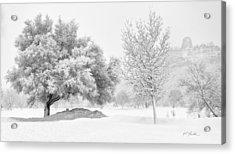 Winona Snowstorm Acrylic Print by Al  Mueller