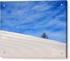 Winter 1 Acrylic Print by Vassilis Tagoudis