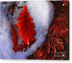Winter 3  Acrylic Print by Vassilis Tagoudis