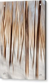 Winter Abstract Acrylic Print by Bill Wakeley