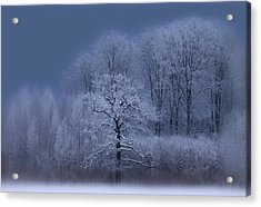 Winter Acrylic Print by Allan Wallberg