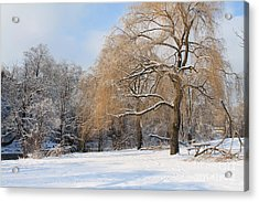 Winter Along The River Acrylic Print