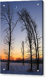 Winter At Dusk Acrylic Print