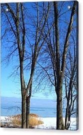 Winter At Lake Huron Acrylic Print by Rhonda Humphreys