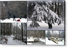 Acrylic Print featuring the photograph Winter At Petrifying Springs Park by Kay Novy