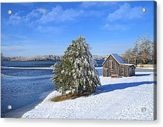 Acrylic Print featuring the photograph Winter At The Bog II by Gina Cormier