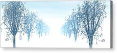 Winter Avenue Acrylic Print by Nicholas Burningham