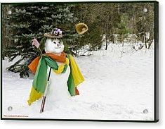Winter Baseball Ball Gown  Acrylic Print by LeeAnn McLaneGoetz McLaneGoetzStudioLLCcom