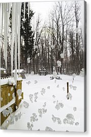 Winter Below Zero 2 Acrylic Print by Judy Via-Wolff