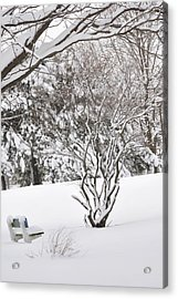 Winter Bench Acrylic Print by Frederico Borges