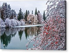 Winter Berries Acrylic Print by Nichon Thorstrom