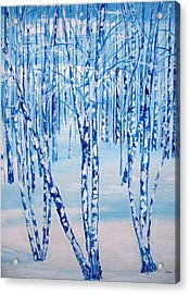 Winter Birch Acrylic Print